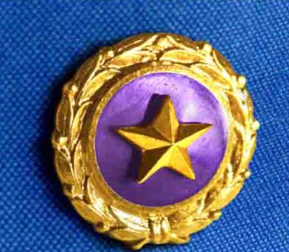 Gold Star Mother's